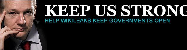 Wikileaks, ¿Democracia?